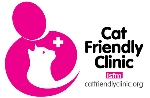 Gold Cat Friendly Clinic awarded