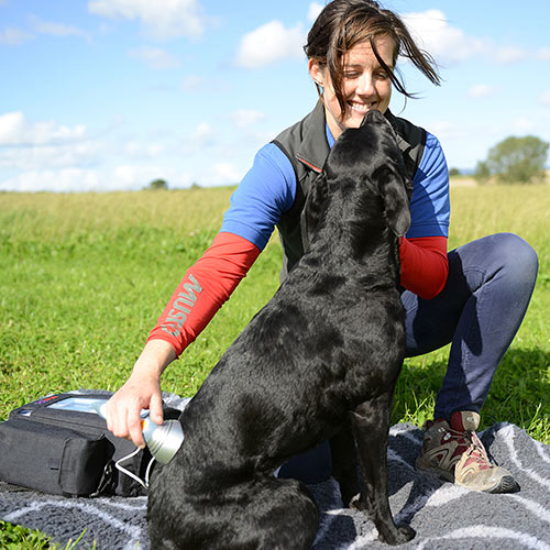Physiotherapy-quantock-vet-hospital-bridgwater