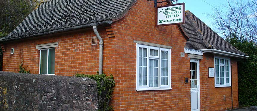 contact-nether-stowey-vets-bridgewater-mb