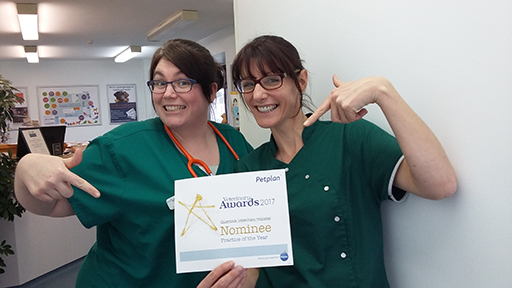 Clients vote Quantock Vets as 'Practice of the Year'
