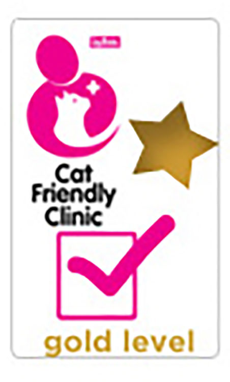 Gold Cat Friendly Clinic award