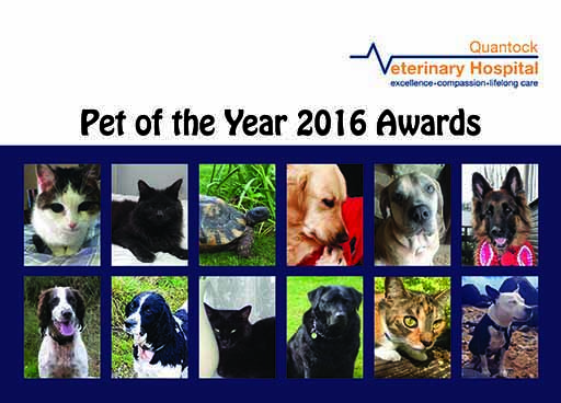 Pet of the Month winners 2016