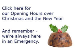 Quantock Veterinary Hospital Christmas opening hours