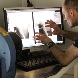 Digital Radiography at Quantock Vet Hospital