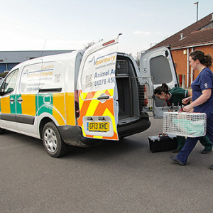 Ambulance collections and deliveries at Quantock Vet Hospital