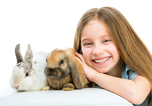Rabbit Awareness Week 18th – 26th June
