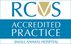 Quntock Vets - accredited Small Animal Hospital