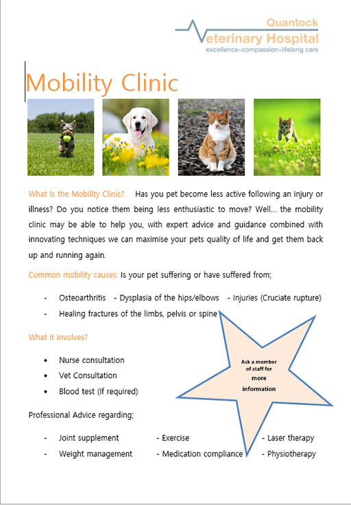 Free mobility clinics for cats and dogs