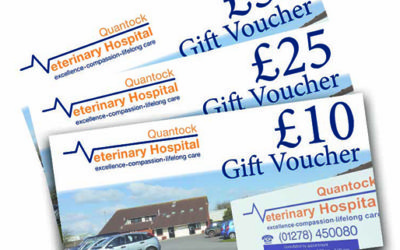 Vouchers for Quantock Veterinary Hospital services and products – a perfect gift idea