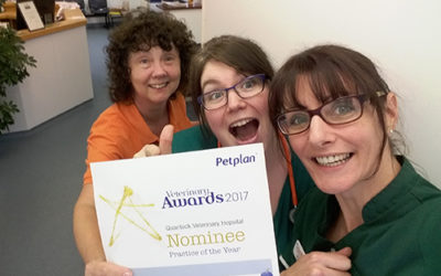'Practice of the Year' Award nomination for Quantock Veterinary Hospital