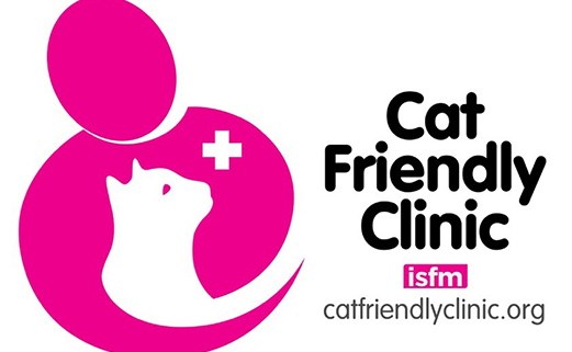 Highest Gold standard 'Cat Friendly Clinic' award