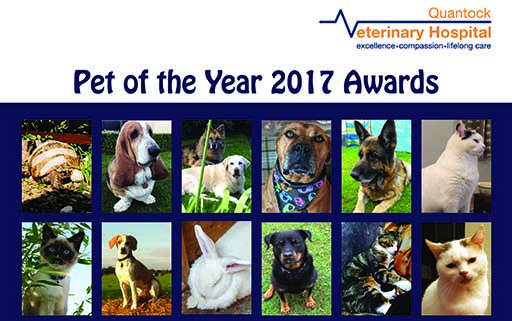Twelve amazing pets battle it out for Quantock's Pet of the Year!