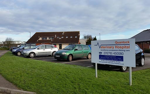 Vet vacancy at Quantock Veterinary Hopsital