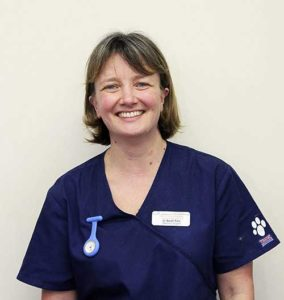 Sarah Cole Quantock Veterinary Hospital Vet