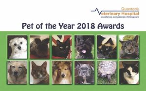Quantock Veterinary Hospital's Pet of the Year 2018