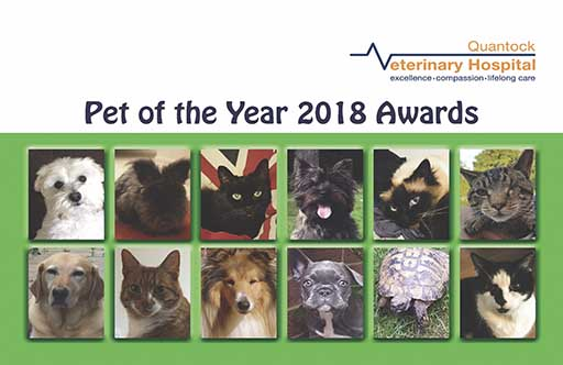 Winners chosen for Quantock Hospital Pet of the Year 2018