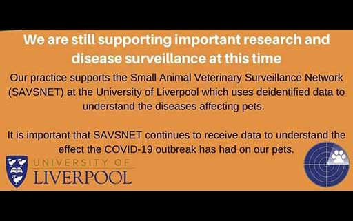 Using Data and Research for understanding pet diseases