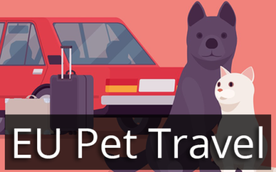 Pet travel between the UK and EU countries after Brexit