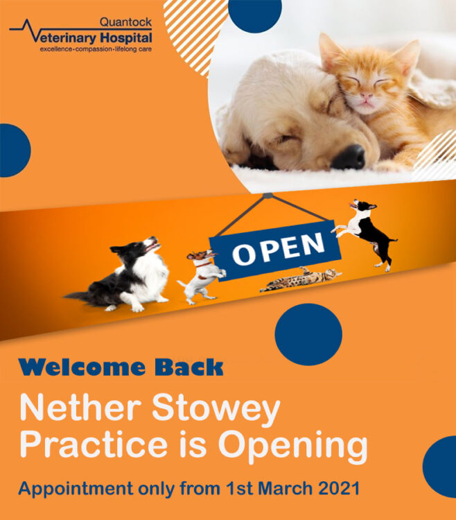 Nether Stowey opening notice